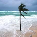 Hurrikan Igor in Bermuda